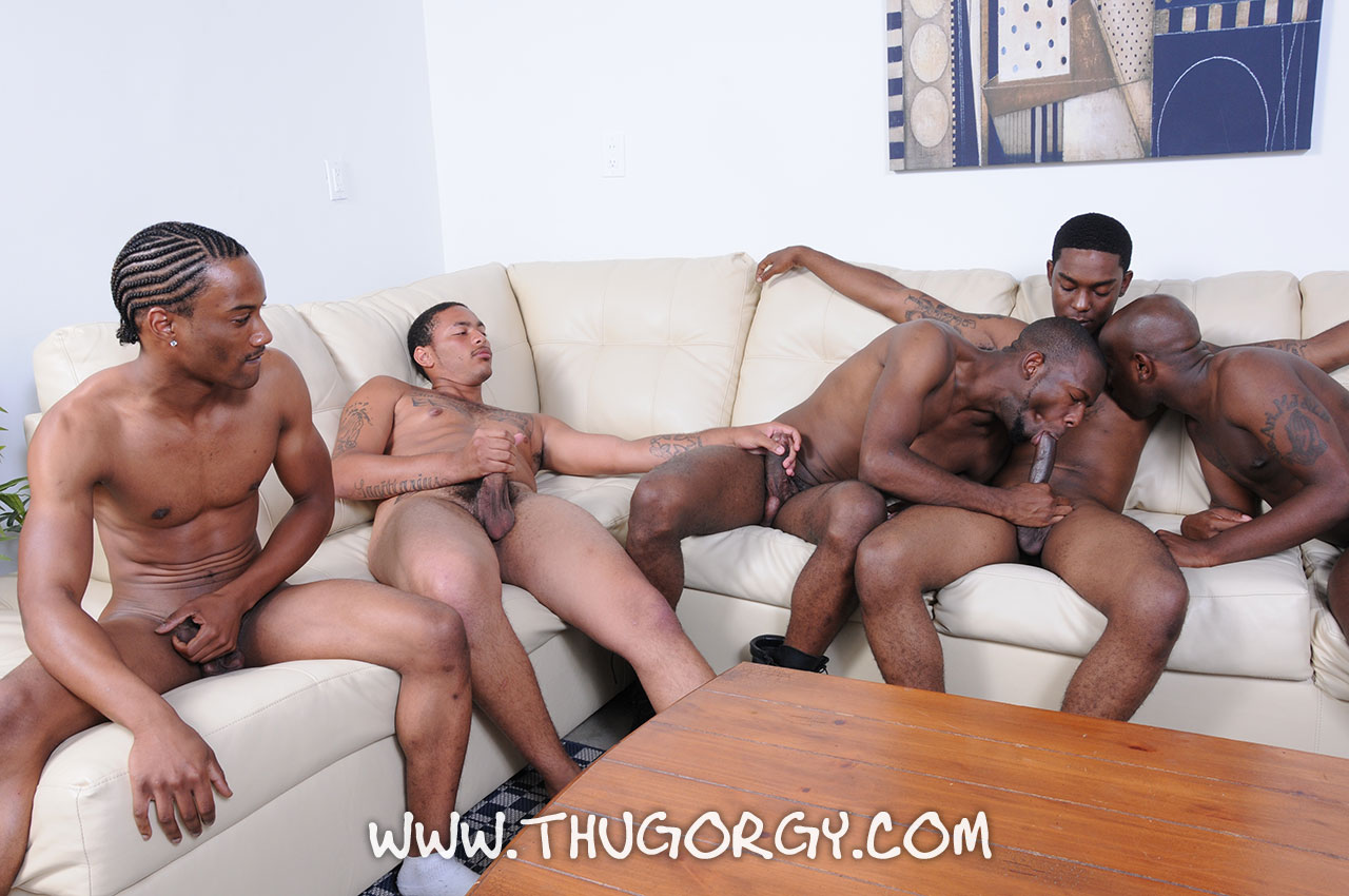ThugOrgy Angel Boi Intrigue Kash Mr Magic Ramon Steele Big Black Cock Sucking Amateur Gay Porn 11 Five Amateur Black Thugs With Big Black Cocks Having A Cock Sucking Orgy