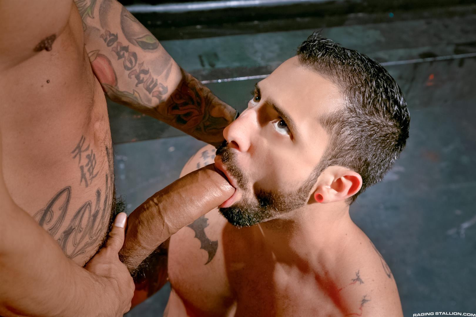 latin blo jop gay porn